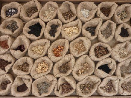 Vendita semi di piante e fiori - La Semeria